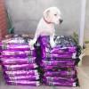 Donamos 140 Kg de pienso a Acción Animal Valencia