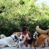 Donamos 300 € a Pepa Tenorio, otra GRAN mujer que cuida de los perros callejeros