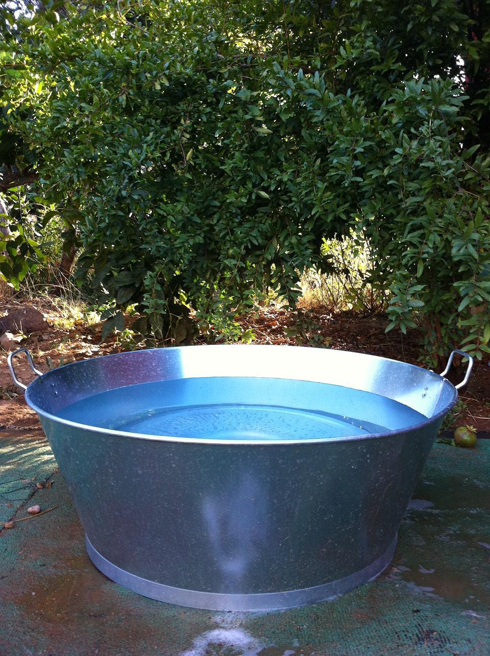 Mvp dona 5 barre os piscinas para los perritos de el amigo for Piscinas para perros grandes