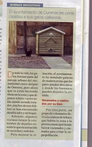 ARTICULO_SOBRE_LOS_GATOS_EN__OURENSE